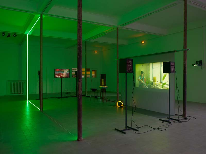 Haroon Mirza - The Calling